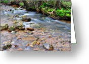 Williams Greeting Cards - Middle Fork of Williams River Greeting Card by Thomas R Fletcher