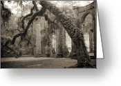 Carolina Greeting Cards - Old Sheldon Church Ruins Greeting Card by Dustin K Ryan