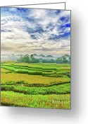 Terraces Greeting Cards - Paddy rice panorama Greeting Card by MotHaiBaPhoto Prints