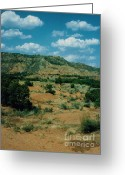 Palo Duro Canyon State Park Greeting Cards - Palo Duro Canyon Area Greeting Card by Ruth  Housley