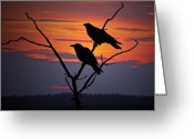 Orange Greeting Cards - 2 Ravens Greeting Card by Ron Day