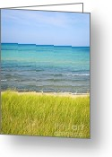Summertime Greeting Cards - Sand dunes at beach Greeting Card by Elena Elisseeva