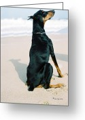 Doberman Greeting Cards - Sing To Me Greeting Card by Rita Kay Adams