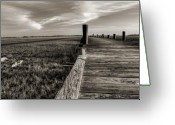 Sepia Greeting Cards - Sol Legare Dock Greeting Card by Dustin K Ryan