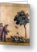 Catholic Painting Greeting Cards - St. Francis Of Assisi Greeting Card by Granger