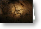 Rock Drawings Greeting Cards - Stone-age Cave Paintings, Chauvet, France Greeting Card by Javier Truebamsf