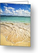 Foam Greeting Cards - Tropical beach  Greeting Card by Elena Elisseeva