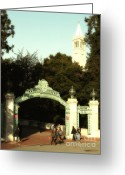 Cal Bear Greeting Cards - UC Berkeley . Sproul Plaza . Sather Gate and Sather Tower Campanile . 7D10027 Greeting Card by Wingsdomain Art and Photography