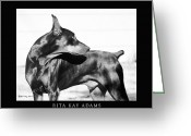 Doberman Greeting Cards - Watchful Greeting Card by Rita Kay Adams