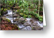 Trout Stream Greeting Cards - White Oak Run in Spring Greeting Card by Thomas R Fletcher