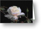 Bletila Striata Greeting Cards - White Rose Painting Greeting Card by Don  Wright