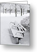 Benches Photo Greeting Cards - Winter park Greeting Card by Elena Elisseeva
