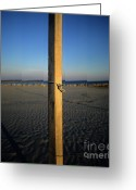 Shoreline Greeting Cards - Wooden post Greeting Card by Bernard Jaubert
