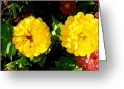 Bella Greeting Cards - 2 Yellow Flowers Greeting Card by Bella