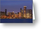 Night Scene Greeting Cards - 2010 Chicago Skyline Greeting Card by Donald Schwartz