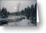 Winter Views Greeting Cards - Untitled Greeting Card by James L. Stanfield