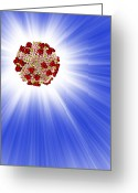 Knob Greeting Cards - Aids Virus Particle, Computer Artwork Greeting Card by Mehau Kulyk