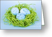 Spotted Greeting Cards - Blue Easter eggs  Greeting Card by Elena Elisseeva