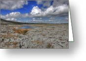 Barren Limestone Greeting Cards - Burren landscape Greeting Card by John Quinn