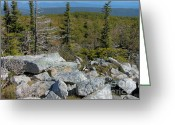Exploration Digital Art Greeting Cards - Dolly Sods Wilderness Greeting Card by Thomas R Fletcher