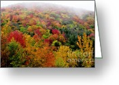 Winding Road Greeting Cards - Fall color along the Highland Scenic Highway Greeting Card by Thomas R Fletcher