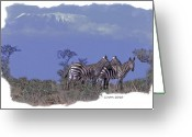 Zebra Greeting Cards - Kilimanjaro Greeting Card by Larry Linton