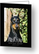 Dobe Greeting Cards - Knock Out Greeting Card by Rita Kay Adams