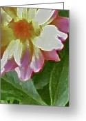The Start Greeting Cards - Mix Or Match Flowers  Greeting Card by Debra     Vatalaro