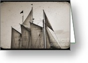 "\""pirate Ship\\\"" Greeting Cards - Schooner Pride Tall Ship Charleston SC Greeting Card by Dustin K Ryan"