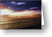 Jensen Beach Greeting Cards - Softly As I Leave You Greeting Card by Joyce L Kimble
