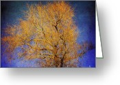 Enchanted Greeting Cards - Textured tree Greeting Card by Bernard Jaubert