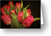 Tulips Greeting Cards - Tulips Greeting Card by Cathie Tyler