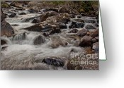 Wall Calendars Greeting Cards - Wild Basin White Water Greeting Card by Brent Parks