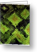 Wall Art Tapestries - Textiles Greeting Cards - 35 Greeting Card by Mildred Thibodeaux
