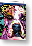 Dog Portrait Greeting Cards - American Bulldog Greeting Card by Dean Russo