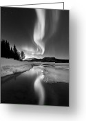 Black And White Photography Photo Greeting Cards - Aurora Borealis Over Sandvannet Lake Greeting Card by Arild Heitmann