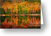 National Greeting Cards - Fall forest reflections Greeting Card by Elena Elisseeva