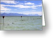 Mountain View Greeting Cards - Lake Constance Greeting Card by Joana Kruse