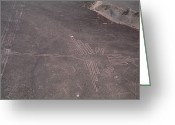 Nazca Greeting Cards - Nazca Lines Greeting Card by David Nunuk