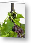 Green Vines Greeting Cards - Red wine Greeting Card by Joana Kruse