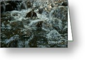 Screen Doors Greeting Cards - River Greeting Card by Odon Czintos