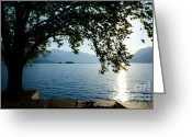 Blue Leaves Greeting Cards - Sunshine over an alpine lake Greeting Card by Mats Silvan