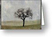 Illustration Greeting Cards - Textured tree Greeting Card by Bernard Jaubert