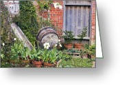 Garden Pots Greeting Cards - The Lost Gardens Of Heligan, Uk Greeting Card by Dr Keith Wheeler