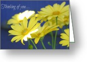 Northwest Flowers Greeting Cards - Thinking of you... Greeting Card by Cathie Tyler