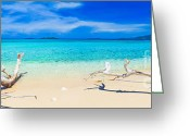 Scenery Greeting Cards - Tropical beach Malcapuya Greeting Card by MotHaiBaPhoto Prints