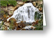 Boulder Greeting Cards - Waterfall Greeting Card by Elena Elisseeva