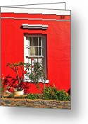 Flowerbed Greeting Cards - Windows of Bo-Kaap Greeting Card by Benjamin Matthijs