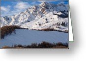 Forested Greeting Cards - Winter in the Wasatch Mountains of Northern Utah Greeting Card by Utah Images