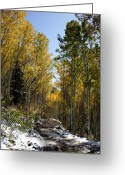 October Greeting Cards - Rocky Mountain Fall Greeting Card by Mark Smith